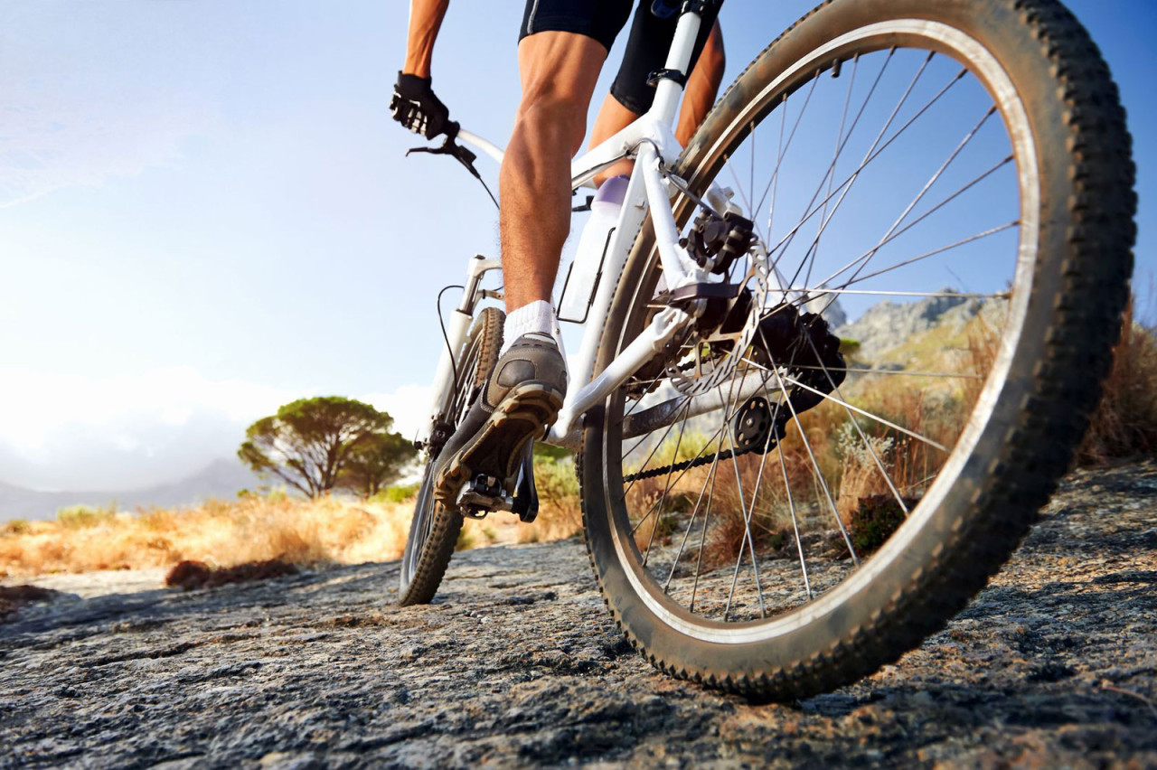 http://www.fietsenschollaert.be/files/modules/gallery/11/thumb_The-ultimate-guide-to-outdoor-cycling-for-weight-loss.jpg